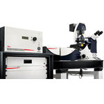 Leica TCS SP8 STED 3X - fast and direct 3D super-resolution