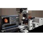 C2 plus confocal microscope
