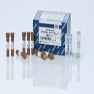 therascreen EGFR RGQ PCR Kit (24)
