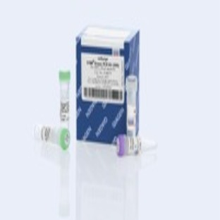 miScript SYBR Green PCR Kit (200)